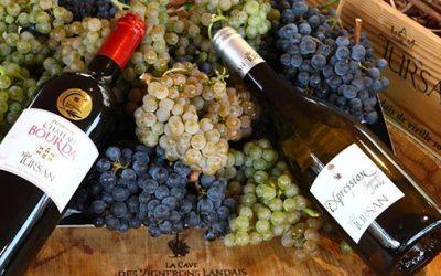 Escapade thermale sur la route des vins de Tursan